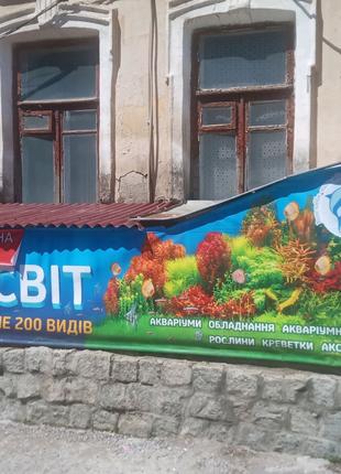 Современный магазин аквариумистики, большой выбор аквариумных рыб
