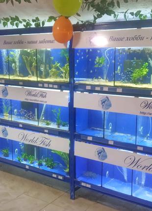 Аквариумные рыбки, аквариумы, растения, креветки, оборудование