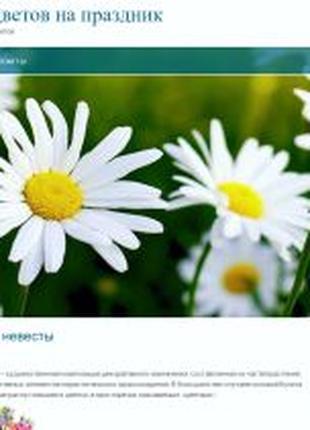 Создание и SEO продвижение сайта (SEO, SMO, Media, IT, PHP, SQ...
