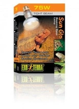 Hagen Exo Terra Intense Basking Spot S20 лампа для создания зо...