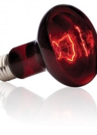 Hagen Exo Terra Infrared Basking Spot R25 инфракрасная лампа 1...