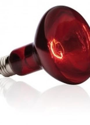 Hagen Exo Terra Infrared Basking Spot R30 инфракрасная лампа 1...