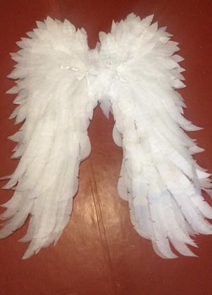 Сдаю крылья Ангела в аренду.