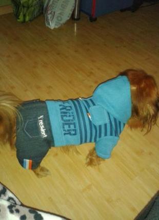 Продам тёплый комбинезон для собаки