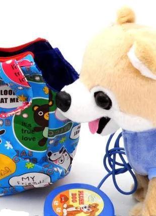 Собака Хаски в сумке