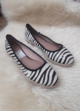 Туфли в принт зебра clarks 38 размер