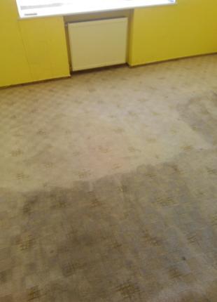 Химчистка ковров (на дому у заказчика)