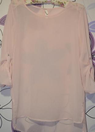 Нежная пудровая блуза с удлиненной спинкой