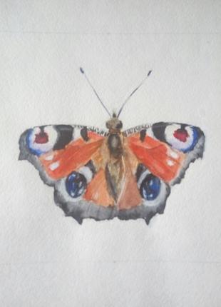 Рисунок/картина акварелью
