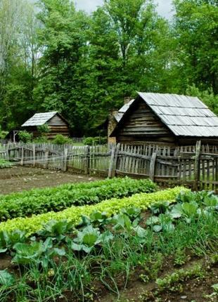 Присмотр за садом и огородом
