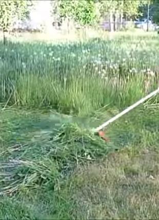 Косіння трави у Львові