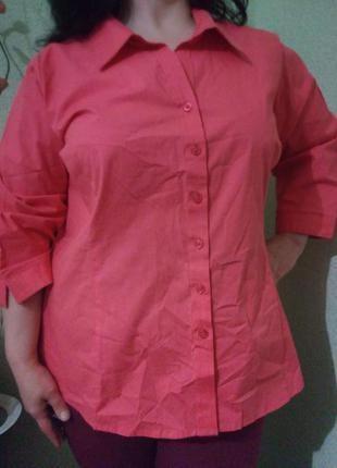 Летняя хлопковая блуза блузка большого размера