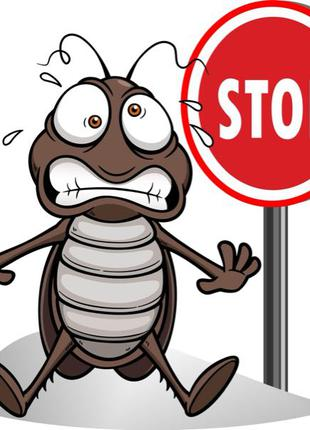 Дезинфекция помещения от любых видов насекомых