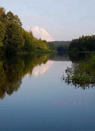 Платная рыбалка и отдых на частных прудах