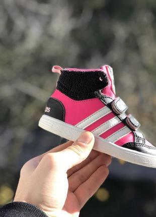Adidas neo hoops animal спортивні кросівки