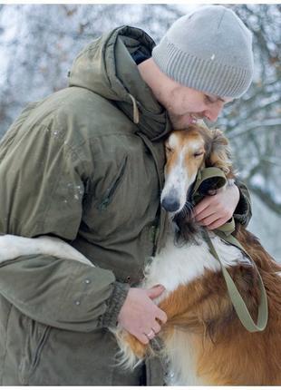 Домашняя передержку для животных