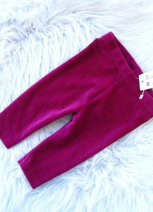 Стильные лосины штаны брюки nutmeg
