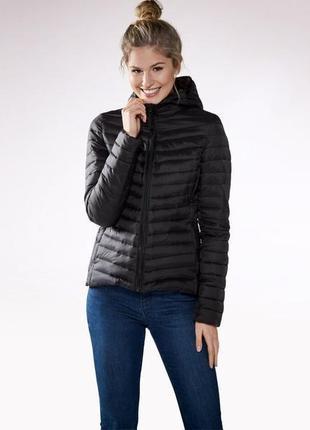 Куртка демисезонная  с капюшоном, esmara, германия, осень-весна