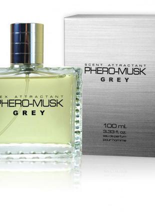 Духи с феромонами мужские Aurora PHERO-MUSK GREY, 100 мл