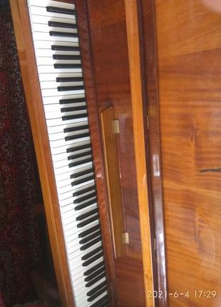 Продам пианино 1500 гр.