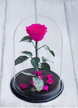 Стабилизированная роза в колбе Lerosh - Premium 33 см