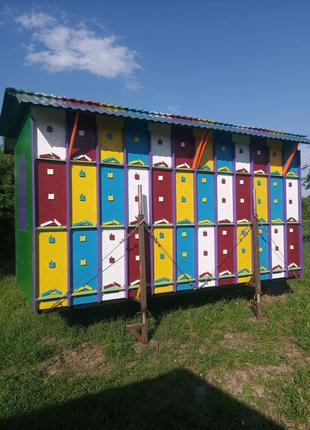 Продам бджоло павільйон