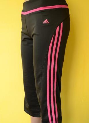 Adidas climacool  женские спортивные бриджи