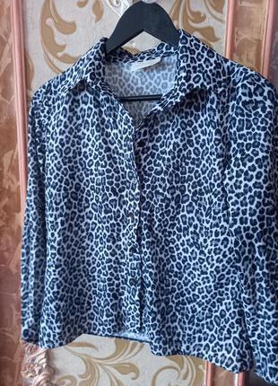 Блузка в леопардовий принт