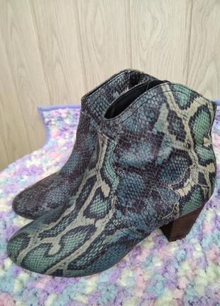 Модные полуботинки со змеиным принтом ботинки ботильоны