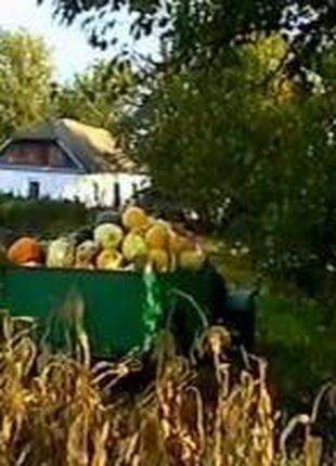Дачный переезд по Черкассам району области и Украине.