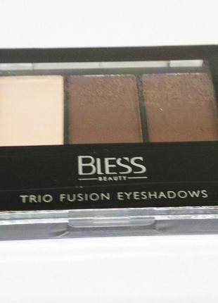 Тени Bless Trio Fusion 8