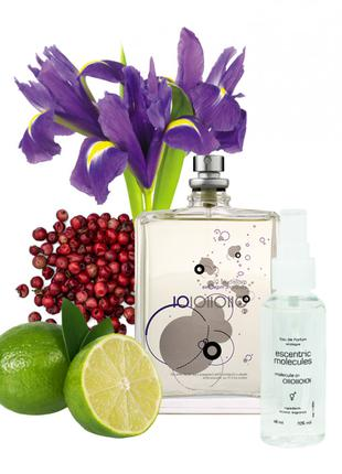 Escentric Molecules Escentric 01 - Parfum Analogue 68ml