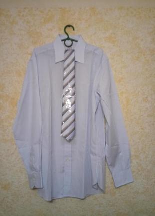 Мужская рубашка в нежно-голубую полоску