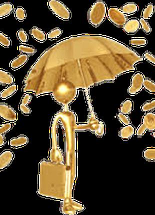 Услуги для предпринимателей (регистрация, консультации и соста...