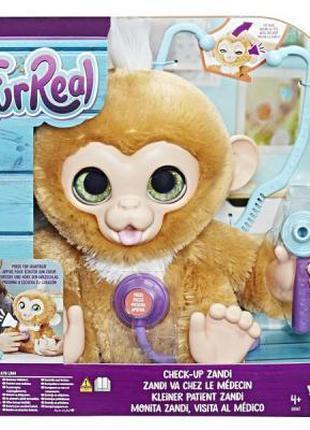 Интерактивная игрушка Hasbro Furreal Friends Вылечи Обезьянку ...