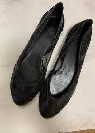 🔥 кожаные балетки basconi
