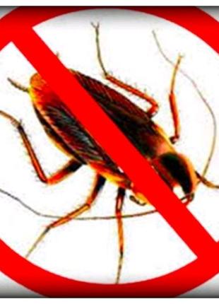 Уничтожение насекомых тараканов, Прусаков, муравьев. Гарантия.