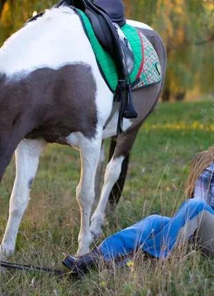 Фотосессии с лошадьми в Харькове