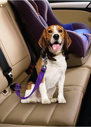 Автомобильный ремень безопасности для домашних животных
