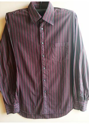 Рубашка мужская в полоску с длинным рукавом хлопок сорочка чол...