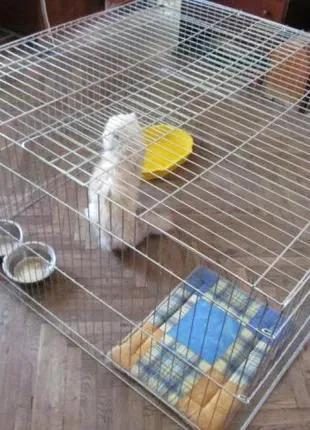 Закрытый манеж клетка для собак кошек 100х100х60h аренда/продажа