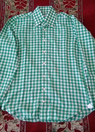 Рубашка cotton в мелкую клетку