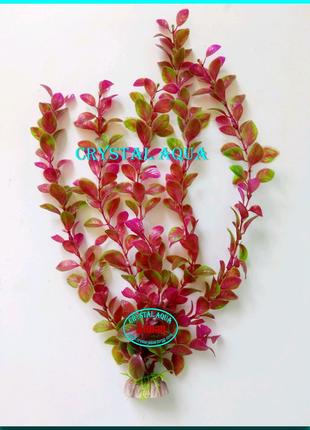 Растение 36см №4