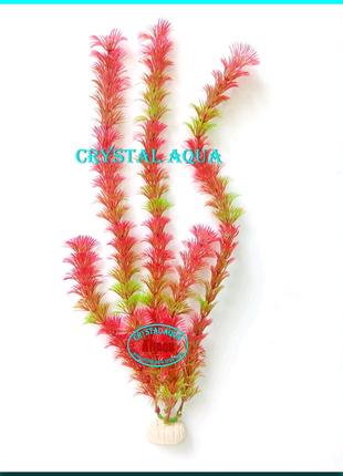 Растение 36см №8