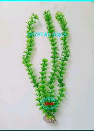 Растение 36см №5