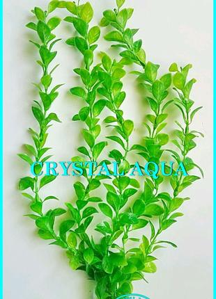 Растение 36см №15