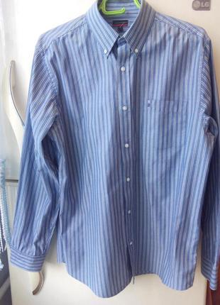 Мужская рубашка пьер карден (pierre cardin)