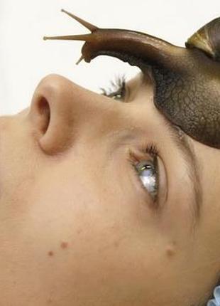 Косметический массаж лица  улитками