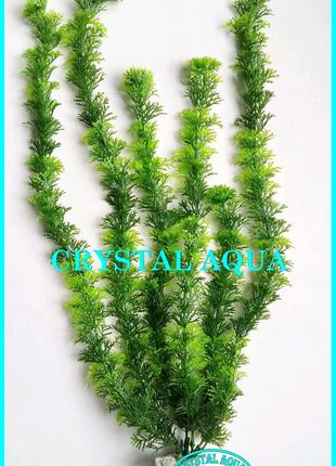 Растение 46см №3