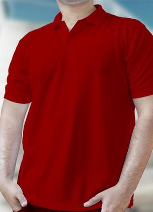 Красная мужская футболка поло